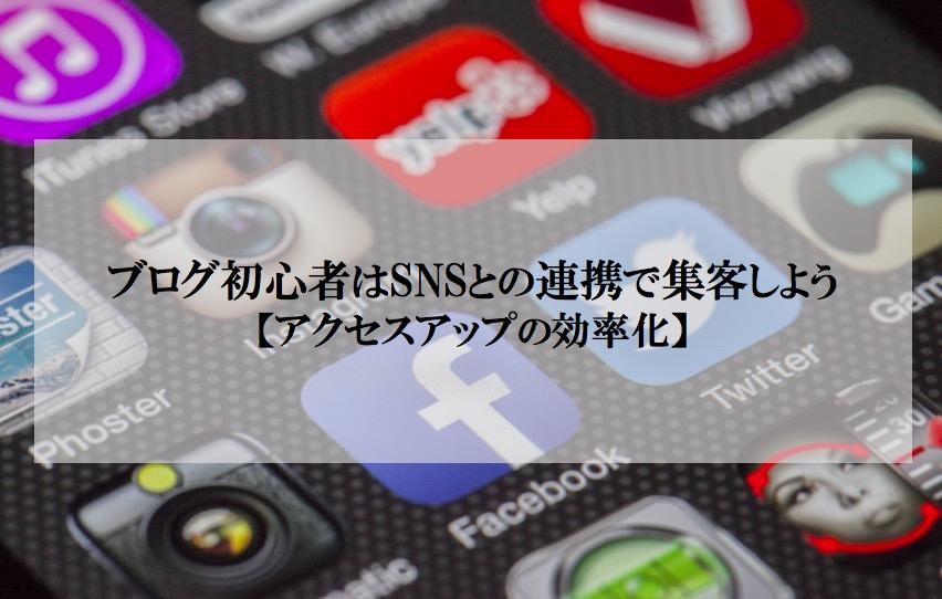 ブログ初心者はSNSとの連携で集客しよう【アクセスアップの効率化】