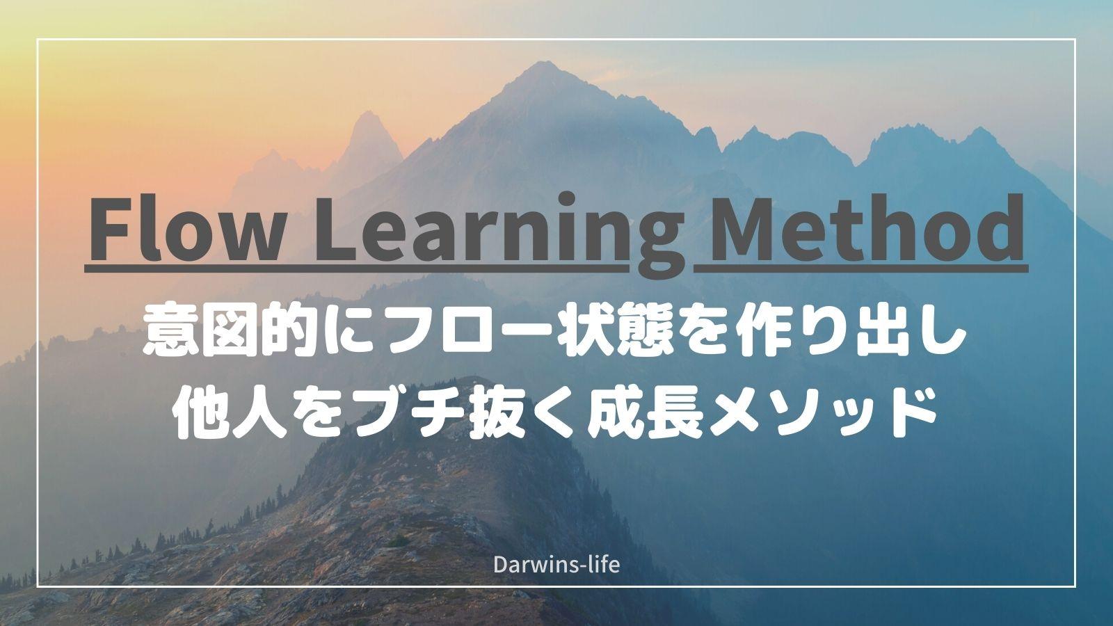 【非売品】フロー学習メソッド
